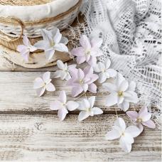 Набор цветов Pastel Flowers Гортензии Дуболистные, бело-розовые