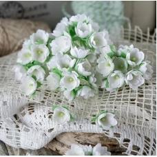 Набор цветов Pastel Flowers Малыши белые