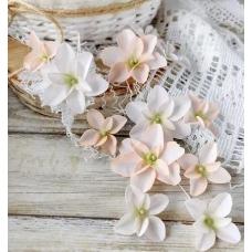 Набор цветов Pastel Flowers Гортензии Дуболистные, пудрово-персиковые
