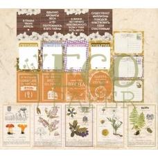 """Набор карточек """"Тайны леса"""", Eco Paper"""
