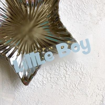 Надпись из матового термотрансфера Little Boy, 10,8х2 см, цвет пастельный голубой