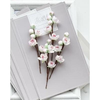 Набор цветов Веточки вишни